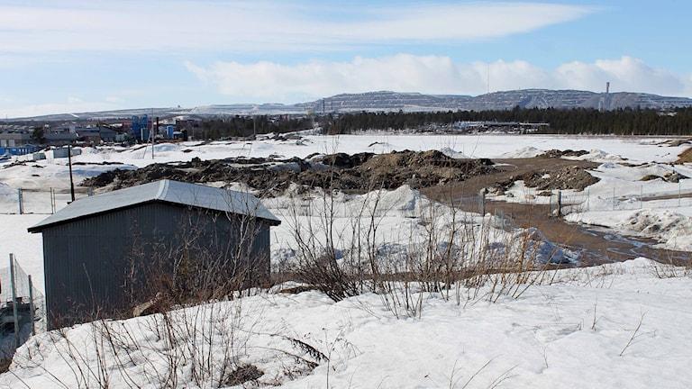 Här ska nya Kiruna byggas. Foto: Alexander Linder/ Sveriges Radio.