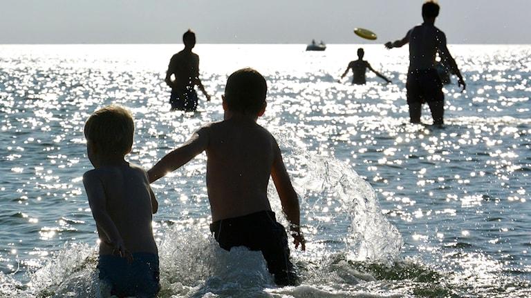 Silhuetter av barn och vuxna som leker och plaskar i havet.
