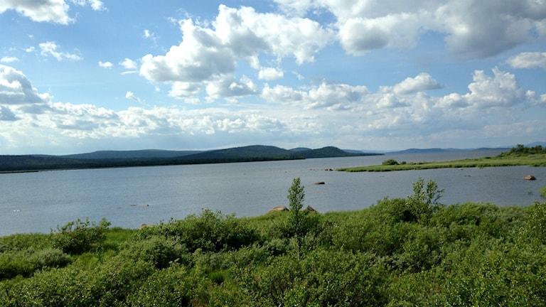 Utsikt över Jelka-Rimakåbbå och Sareks Nationalpark. Foto: Elina Perdahl