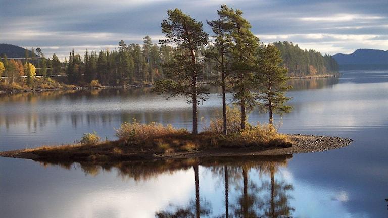Lyssnarbild: En höstbild från Årrenjarka, i Jokkmokksfjällen, med utsikt över fjällsjön Saggat av Per-Arne Standár i Älvsbyn.