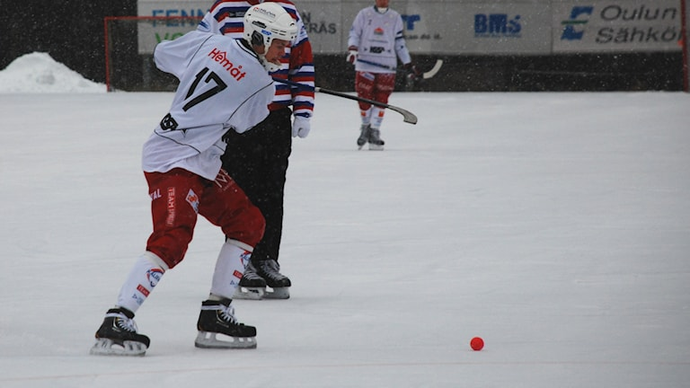 Johan Sundquist i Kalix Bandy