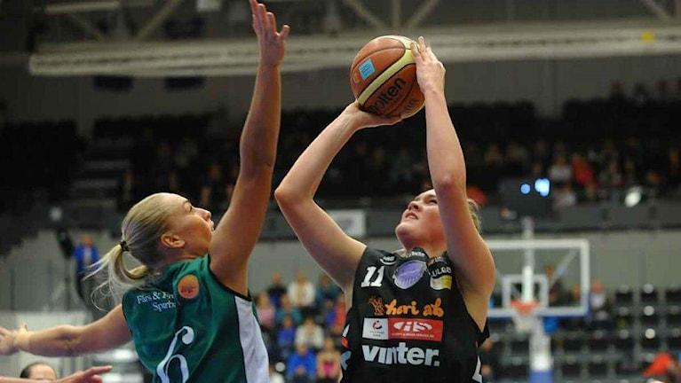Alice Nyström Northland Basket