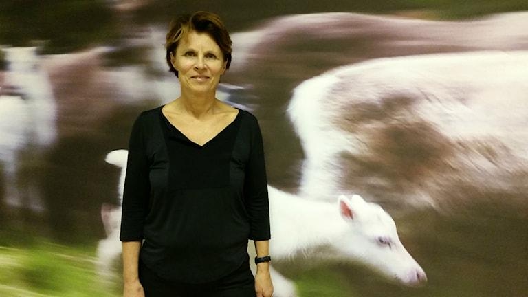 Susanne Johnsson är en av delägarna till den samiska köttbutiken som nu öppnar i Luleå. Foto: Carin Sjöblom/ Sveriges Radio.