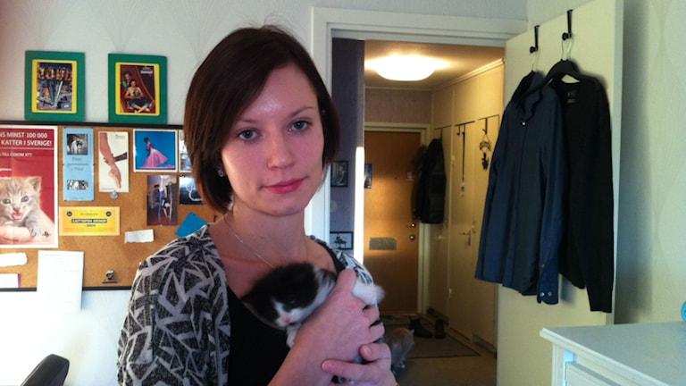 Sara Beckman Larsson, ordförande för kattakuten i Norrbotten, håller i kattungen Bianca.