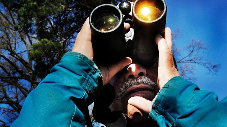 Man spanar efter fåglar med kikare. Foto: Magnus Neideman/SVD/TT