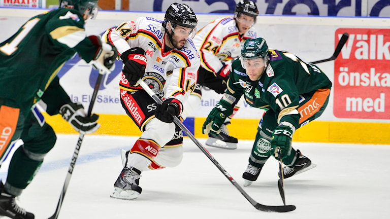 Stephen Dixon, Luleå Hockey. Foto: Fredrik Karlsson/TT.