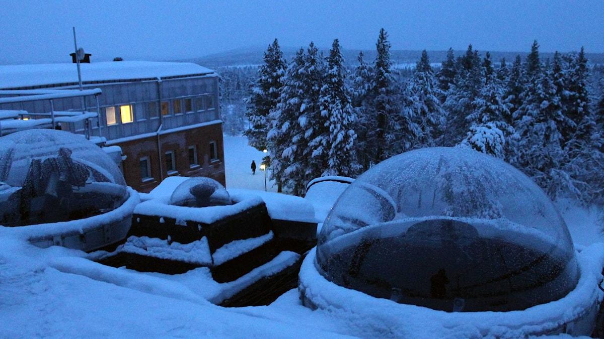 Institutet för rymdfysik, IRF, i Kiruna har norrskenskameror på taket. Foto: Alexander Linder/ Sveriges Radio.
