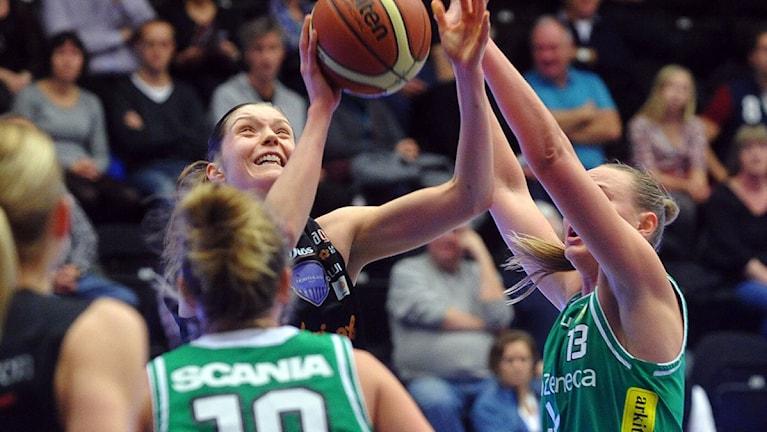 Josefine Westerberg Northland basket
