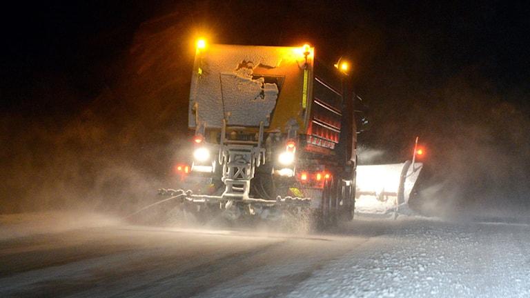Plogbil i snöfall. Foto: Johan Nilsson/TT.