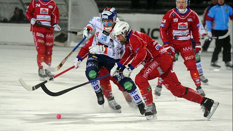 Kalix Bandy i en tidigare match. Foto: Alf Lindbergh/Pressbilder.