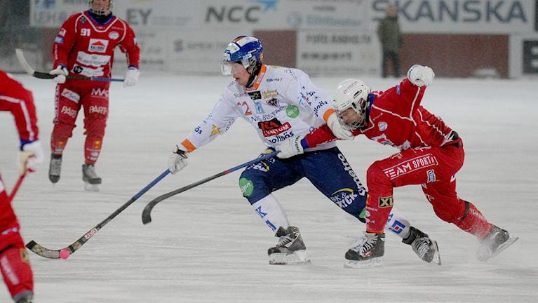Kalix Bandy mot Bollnäs. Foto: Alf Lindbergh/Pressbilder.