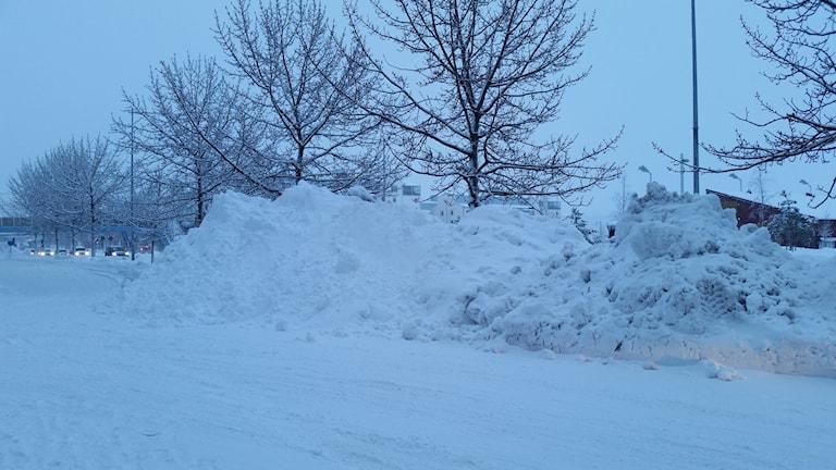 En av alla snöhögar i centrala Luleå. Foto: Carin Sjöblom/ Sveriges Radio.