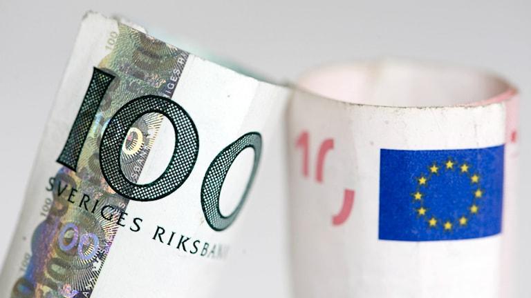En svensk 100-kronorssedel och en 10-eurosedel Foto: Henrik Montgomery/ TT.