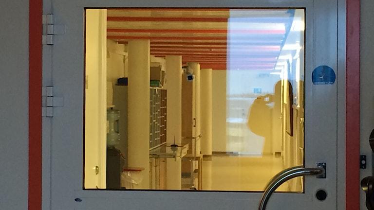 Bakom den här dörren på socialförvaltningen i Boden pågår förhandlingarna. Foto: Carin Sjöblom/Sveriges Radio.