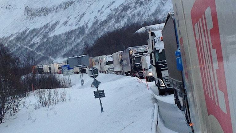 Lastbilar och långtradare stående i lång kö på E10:an vid norska gränsen. Foto: Lars Reidar Rassmusen.