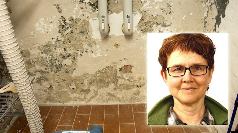 Fuktskadad källarvägg med Berit Edvardsson infälld. Foton: Fredrik Sandberg/TT och Västerbottens läns landsting.