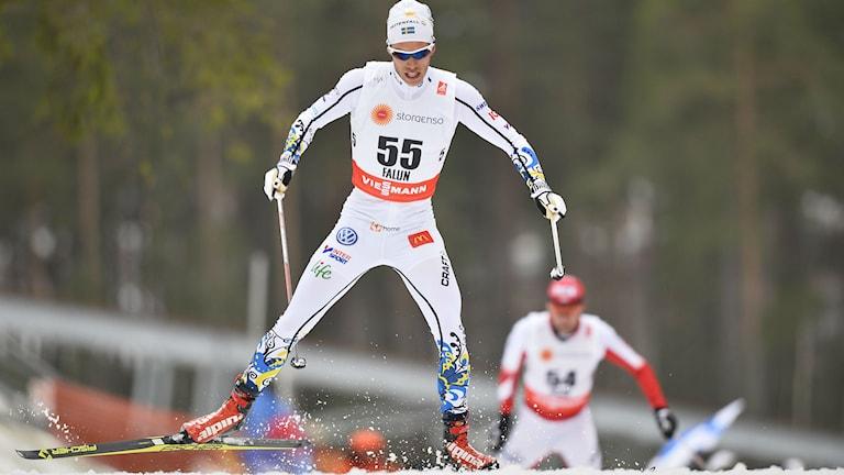 Marcus Hellner  vid skid-VM i Falun. Foto: Anders Wiklund/TT bild