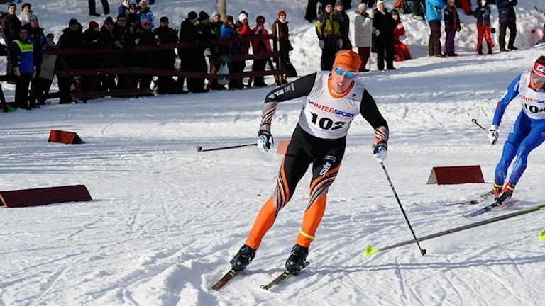 Calle Halfvarsson på skidstadion i Kalix under SM-femmilen 2015. Foto: Alf Lindbergh/Pressbilder.