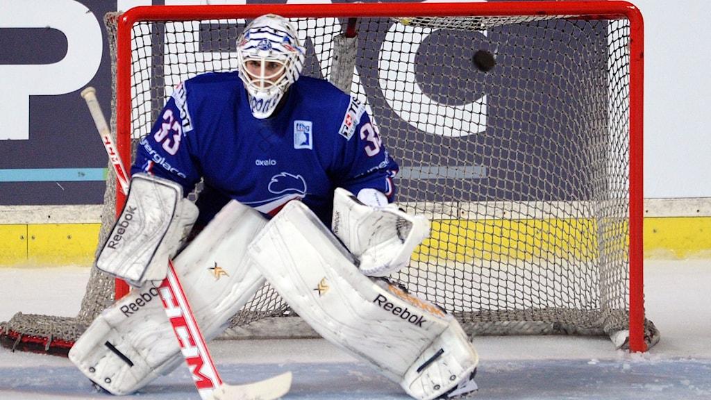 Franske landslagsmålvakten i ishockey Ronan Quemener. Foto: Nicolas Tucat/TT.