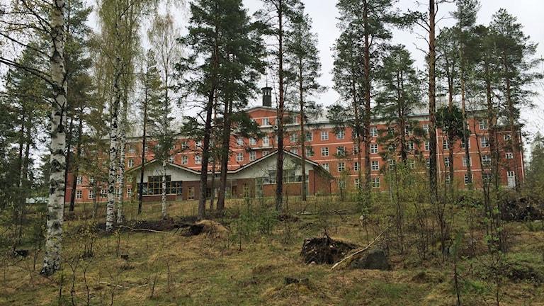 Gamla sanatoriet i Sandträsk skymtar bakom träden. Foto: Ann-Christine Wallner-Hoppe/Sveriges Radio.