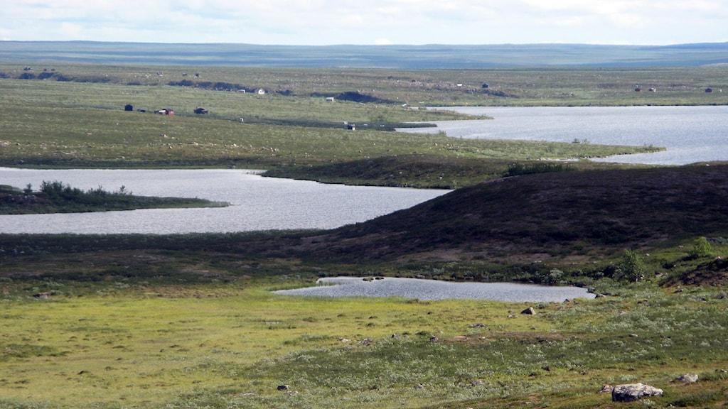 Pärvieförkastningen, som här syns tydligt vid Gamasjávri. Foto: Alexander Linder/ Sveriges Radio.