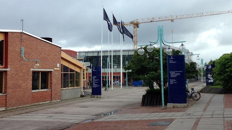 Luleå tekniska universitet, LTU, campus i Luleå. Arkivfoto: Hjalmar Lindberg/Sveriges Radio.