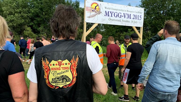Mygg-VM i Övertorneå