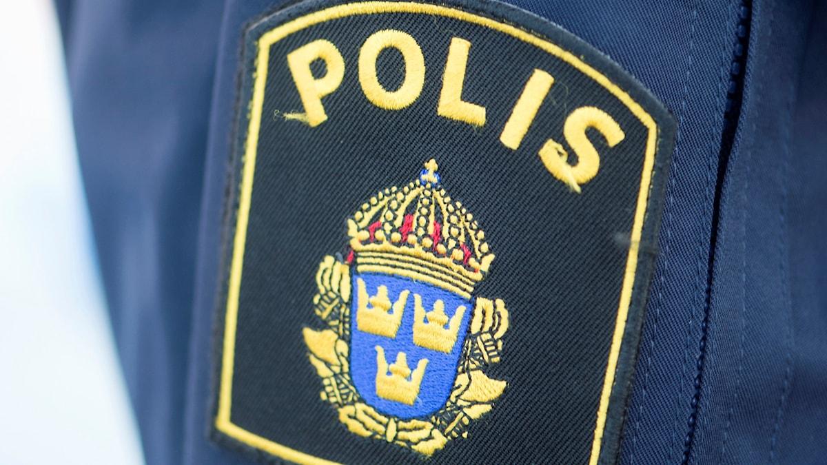 Ett polisemblem på polisuniform. Foto: Fredrik Sandberg/TT