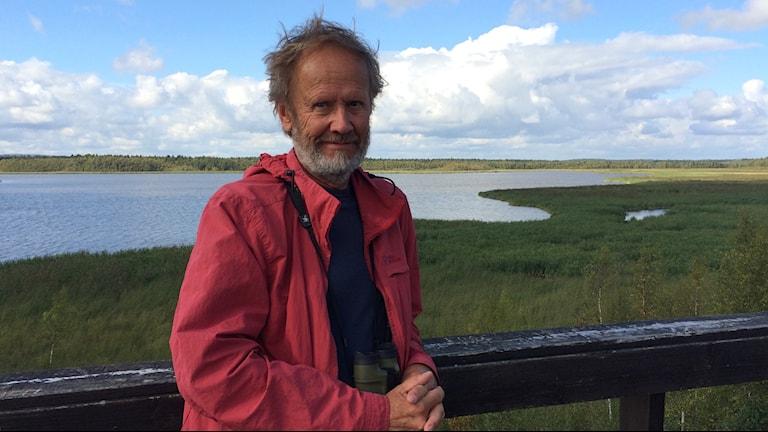 Ekologen Peter Erixon uppe i fågeltornet i Gammelstadsviken. Foto: Samed Salman/Sveriges Radio