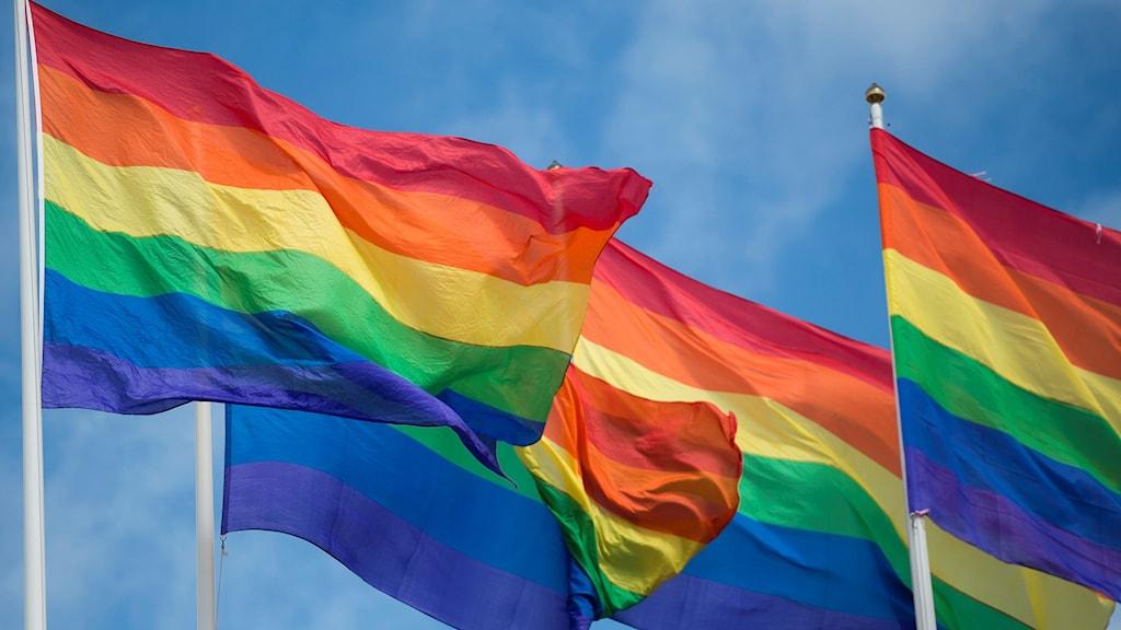 Tre hissade regnbågsflaggor vajar i vinden. Foto: Vilhelm Stokstad/TT.
