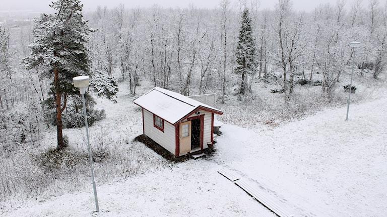 Snön föll över Kiruna på fredagen. Foto: Alexander Linder/ Sveriges Radio.