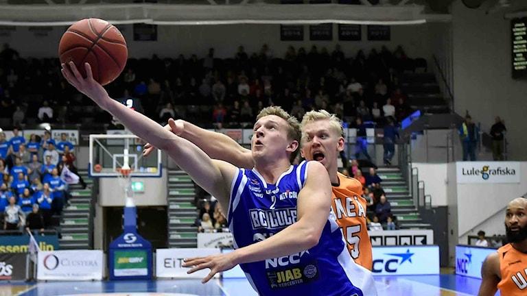 BC Luleå Adam Rönnqvist
