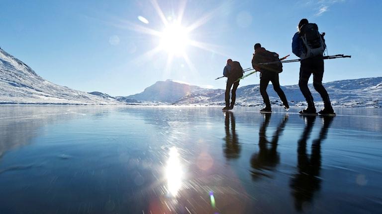 Tre personer åker långfärdsskridskor i fjällvärlden. Foto: Henrik Trygg