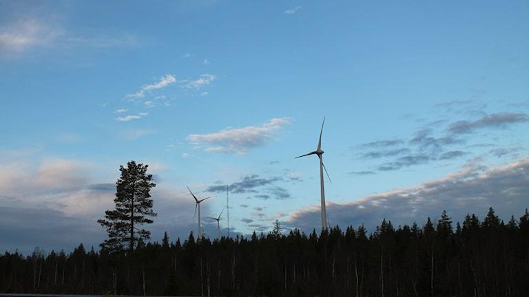 Vindkraftverk på Skogberget, Markbygden
