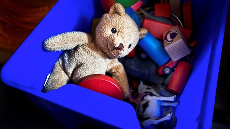 Nalle i leksakslåda. Foto: Yvonne Åsell/SvD/TT
