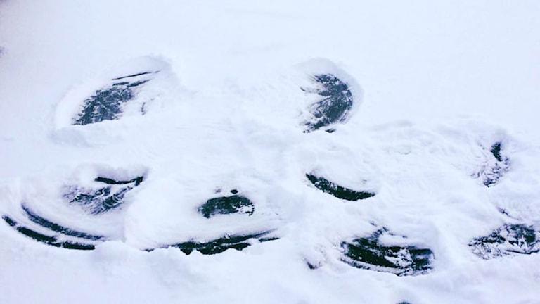 Snöängel på älvis. Foto: Anna Mämmi