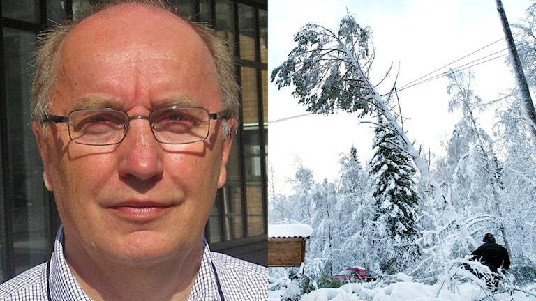 Roger Lindmark, Vattenfall och blötsnö som tynger träd över elledningar. Arkivfoton: David Zimmer/Sveriges Radio och Pontus Lundahl/TT.