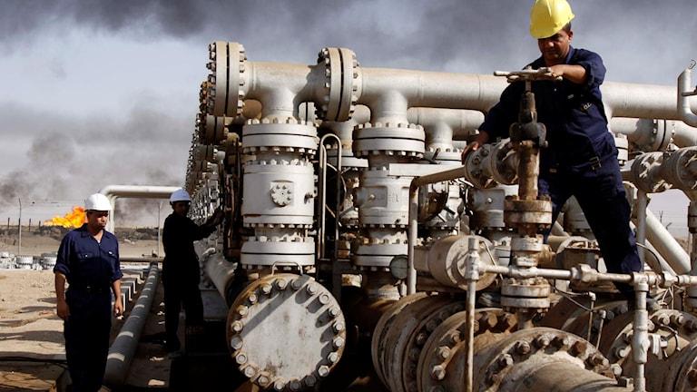 Arbetare på oljeraffinaderi i Irak. Foto: Nabil al-Jurani/TT.
