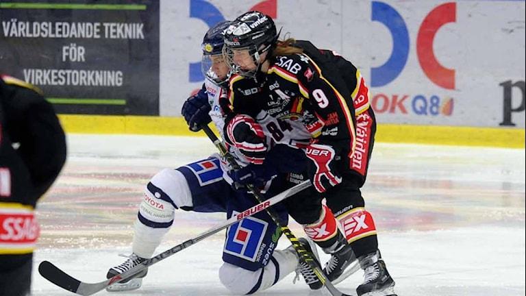 Arkivbild. Luleå Hockey/MSSK mot Linköping. Foto: Alf Lindbergh/Pressbilder.
