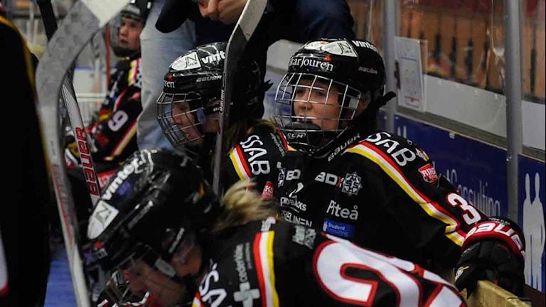Luleå Hockey/MSSK. Foto: Alf Lindbergh/Pressbilder.