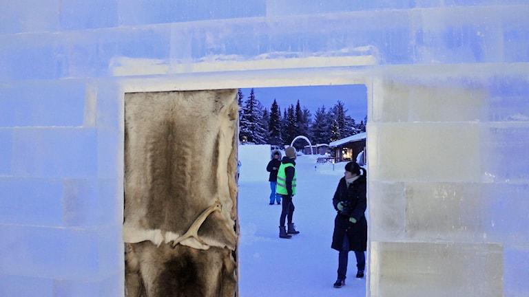 Ishotellet i Jukkasjärvi har slagit upp sina portar. Foto: Alexander Linder/ Sveriges Radio.