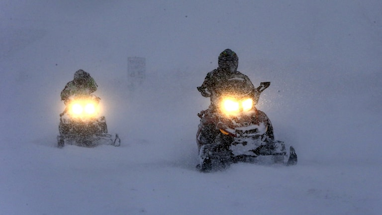 Snow mobiles on the way. Photo: TT.