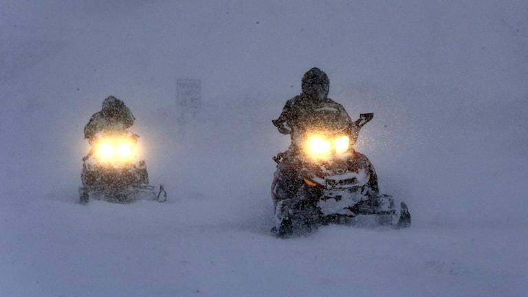 Snöskoterkörning. Foto: TT.
