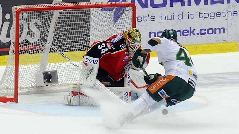 Luleå Hockeys målvakt Joel Lassinantti mot Färjestads Milan Gulas. Foto: Alf Lindbergh/Pressbilder.