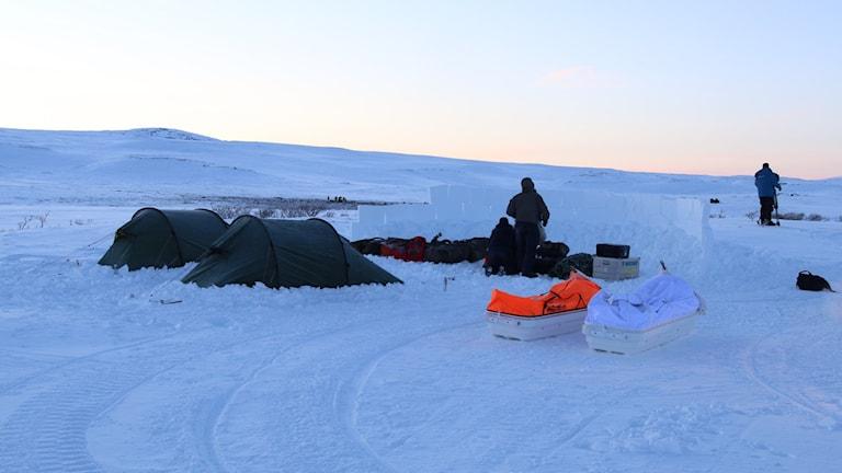 Foto: Knut Haarvik/NRK Nordland