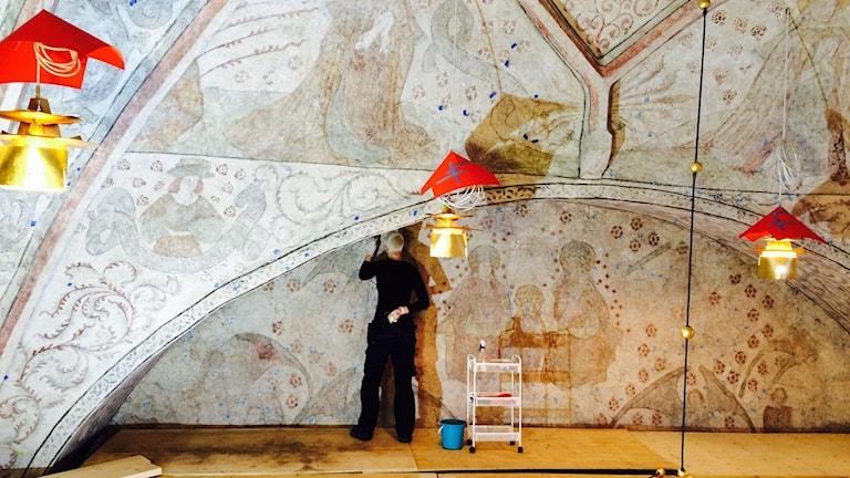 Renoveringen av Nederluleå kyrka. Konservator Elin Lundmark rengör 1500-tals målningarna i taket