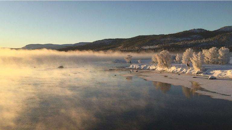 Anders Gunnare tog den här bilden i Tjåmotis. Det var -28 C när bilden fotades.