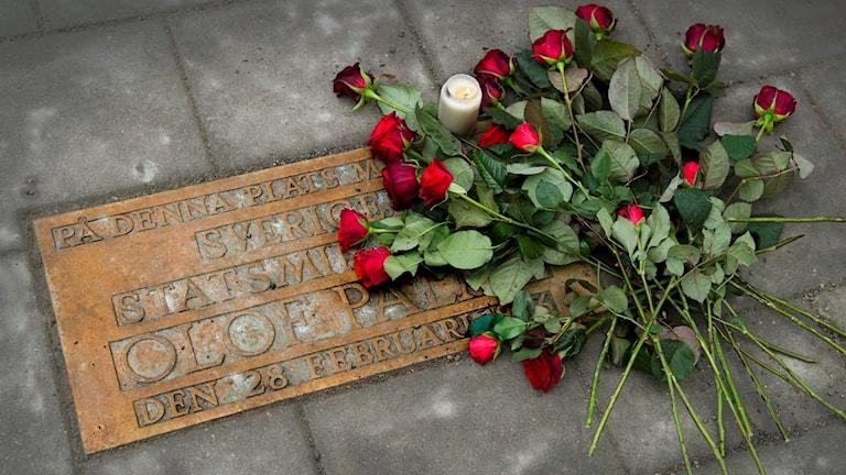 Mordplatsen på Sveavägen i Stockholm. Foto: Claudio Bresciani / TT