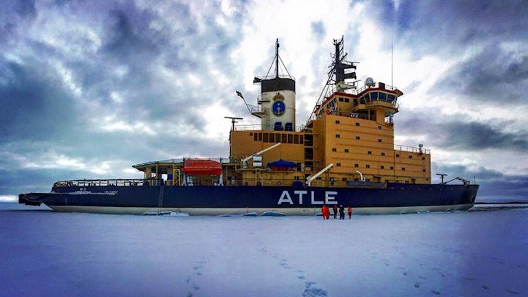 Veckans bild på isbrytaren Atle, utanför Kalix.