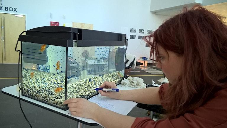 "Tonsättaren Kristin Boussard målar partitur med tuschpenna i sitt verk ""Make a fish come true"" där guldfiskar är dirigenter."
